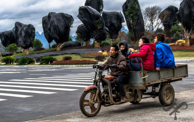 Chinese family transport